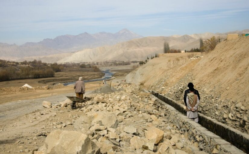 The Taliban are back. Now What?